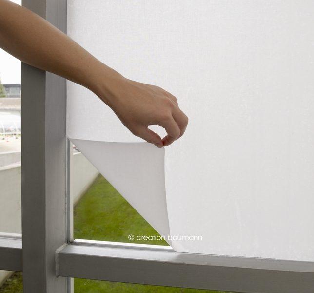 Gecko sichtschutz und fensterdeko interior coach - Adesivi oscuranti per finestre ...