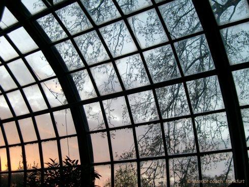 Palmengarten Abendlicht Impression